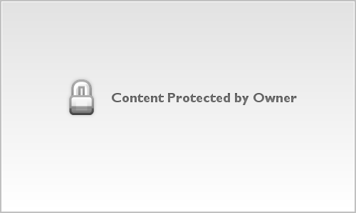 Cougar On Horse_Animals_14_011
